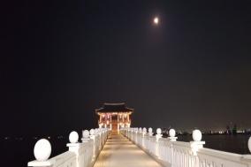 포항, 영일대 해수욕장의 여름밤 풍경