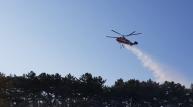 지진트라우마 포항, 3일연속 산불로 시민들 불안증세!
