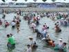 봉화군, 맨손잡이 은어잡이체험 취소 '온라인축제'로