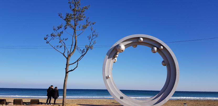꾸미기_월포소나무.jpg
